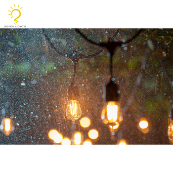 Made In China Christmas Wedding Party Event Decoration Outdoor 48ft 15 E27 Sockets LED Bulb Connectable Festoon String Light