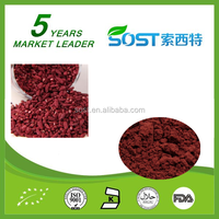 top quality products red yeast rice extract