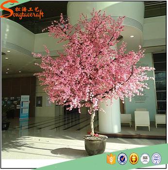 Download 104 Gambar Bunga Hias Sakura Paling Keren