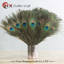 Factory Wholesale natural peacock feathers for sale