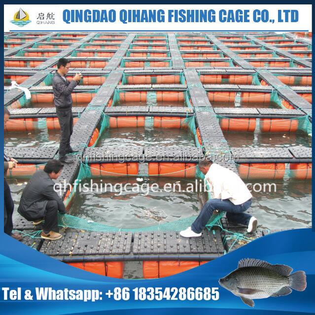 HDPE pontoon cubes floating tilapia fish cages for lake river fish farming cage in Africa