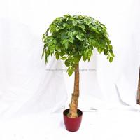 LSD-20160714723 Japanese bonsai types of large outdoor artificial trees pine artificial bonsai tree for garden home decor