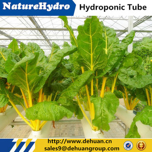 PVC Pipe Planting System Greenhouse Hydroponic Pipe