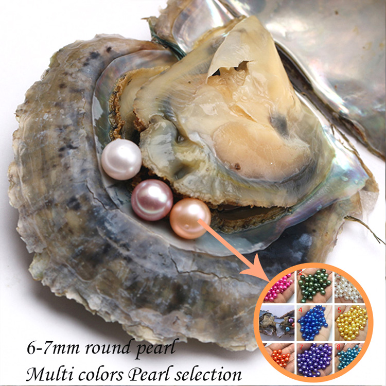 High Quality Hot Wholesale Saltwater Oysters 6-7mm Rainbow Colors Pearls Akoya Oyster With Vacuum Packed