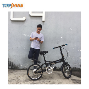 2 wheel portable folding electric bike/electric bicycle/mini folding e-bike/ebike