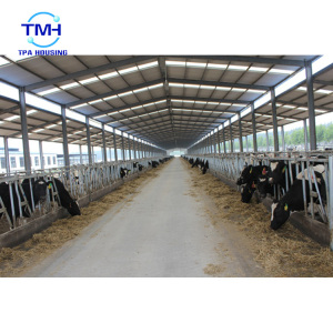 Metal-building-frame steel fabrication cow farm building poultry house for 10000 chickens