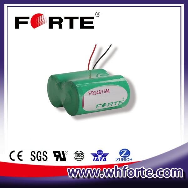 er34615M 3.6V d size battery terminal 14.5Ah high power batteries Automatic meter reading system battery
