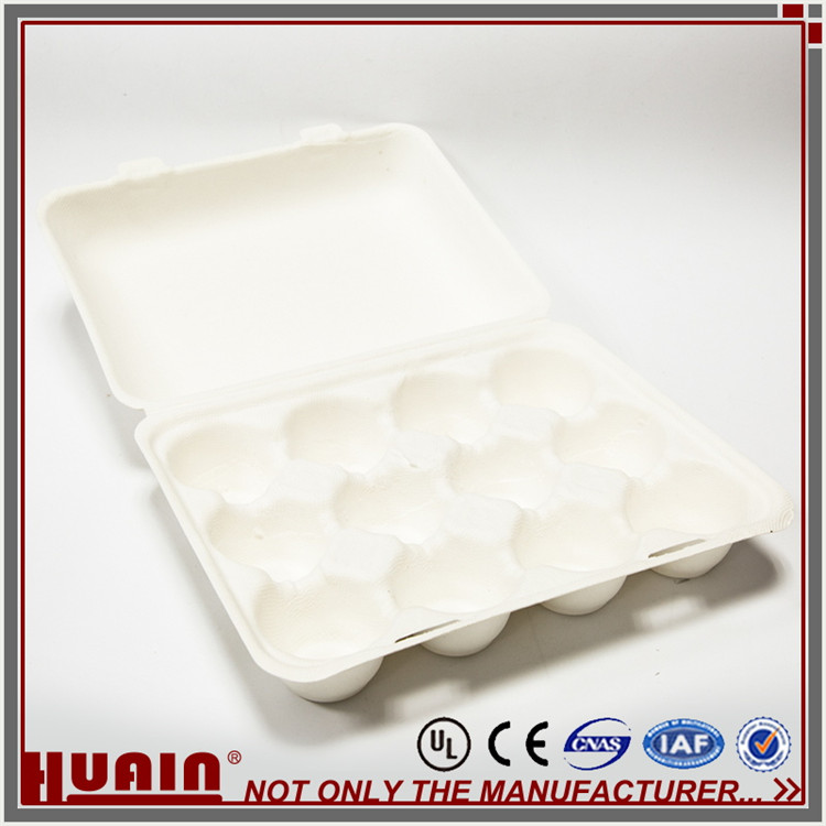 Wet Press Pulp Molding Diy Egg Carton Flowers