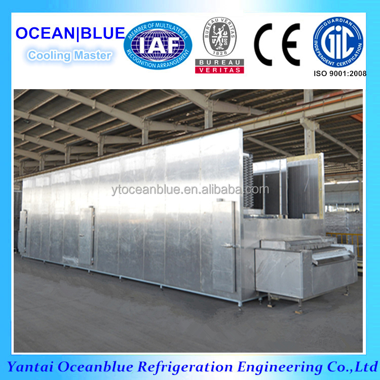 500kg/h IQF Fluidized Bed Tunnel Freezer