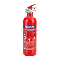 Made in China Customized 1kg small fire extinguisher