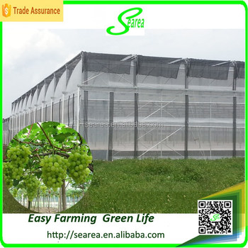 Desain modern pertanian lapisan uv polikarbonat rumah kaca