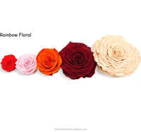 Widely Supply Variety Kinds of Eternal Rose Preserved Flower at Wholesale Price