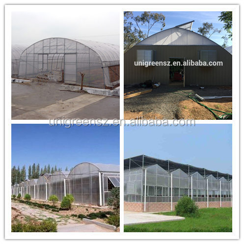 Various agricultural/ commercial greenhouse with related various control systems