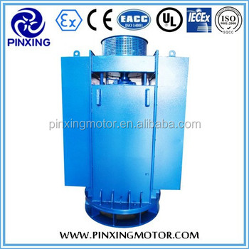 Yl Series High Voltage Vertical Motor Induction Electric