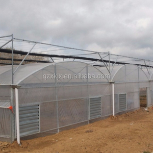 Multi-Span Winter Agricultural Greenhouse
