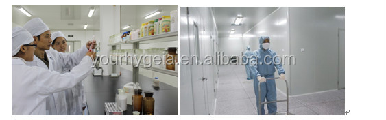 professional film coating premix formulation colo powder coating