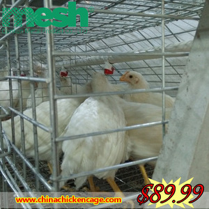 New design best price 3 or 4 layer stainless steel chicken cage