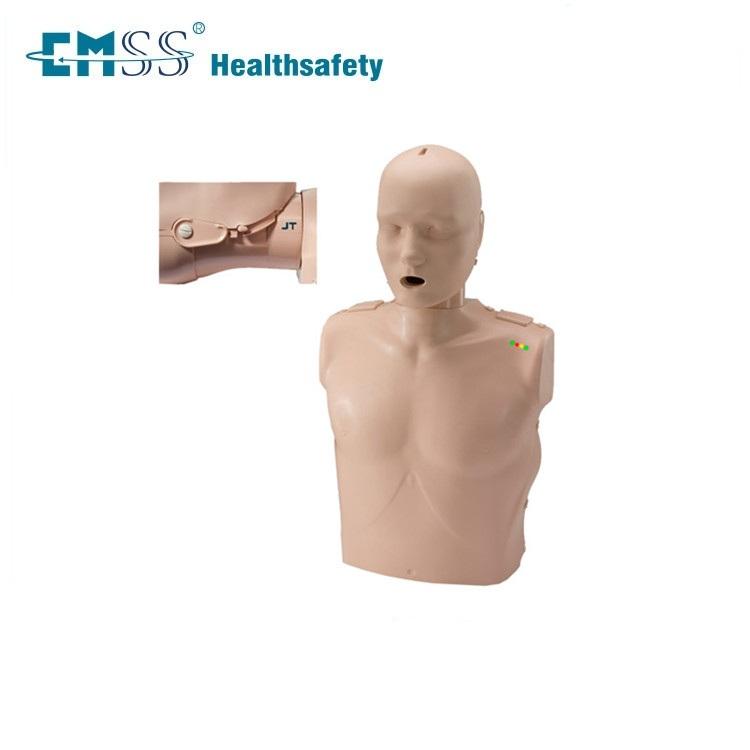 Vind de beste anatomische modellen tweedehands fabricaten en ...