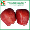 Red Delicious Chinese fruit sweet apple crisp huaniu apple/red apple/apple prices