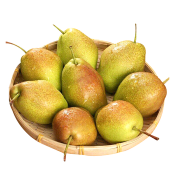 Most popular sweet pear export best quality with cheap price