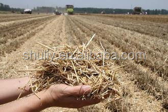 Biomass Paddy Wheat Sorghum Straw Counters-field Machine For ...