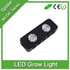 Double Chips Led Grow Lights Spectrum Flower Indoor Lamp for Plants Overseas Veg Bloom