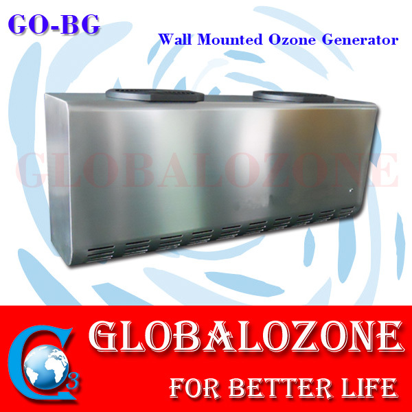 Wall mounted ozone generator machine 2G 3G 5G 10G 15G/Hr