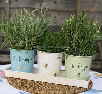 Lovely Bee Pattern Mini Metal Herb Pots Flower Succulent Plants Pot With Galvanized Tray
