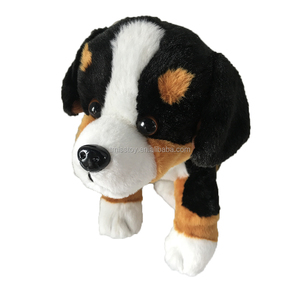 Bernese Mountain Dog Bernese Mountain Dog Suppliers And