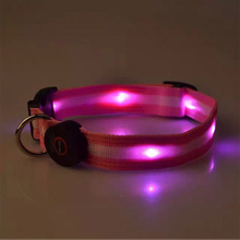 Second generation led dog collar bling bling glowing led flashlight light dog collar