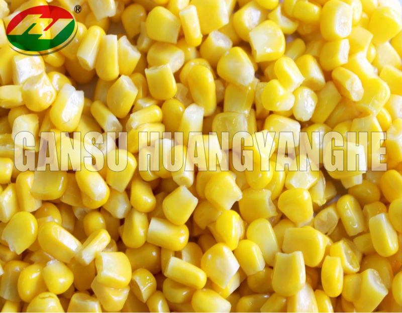 Boiled frozen Yellow Corn