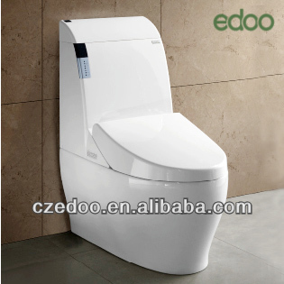 0801 New Design Auto Flush Intelligent Closet Intelligent Toilet Seat China  Manufacturer