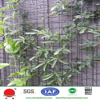 2017 New Product Used Climber Trellis Mesh Welded Wire Panel For