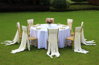 Factory supply monobloc gold chiavari chair tiffany chair plastic for wedding party outdoor