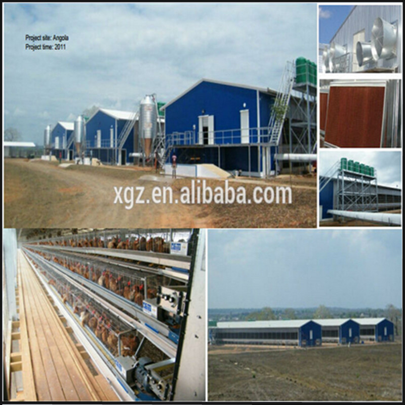 Layer Egg Chicken Cage Poultry Farm House and chicken house equipment Design