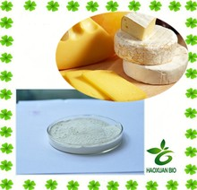 Food Grade Cheese Rennet powder extract with best quality