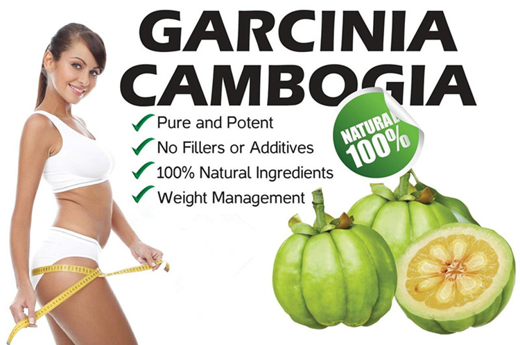 Garcinia cambogia extract powder hydroxycitric acid HCA 60% cas 6205-14-7