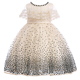 New model kids clothing children wedding dress bridal gown lace girl party dress LL314