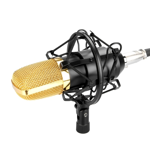 High Quality Professional Condenser Sound Recording Microphone with Shock Mount for Studio Radio Broadcasting