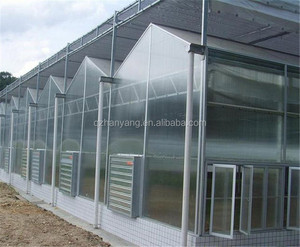 steel structure glass hydroponic greenhouse