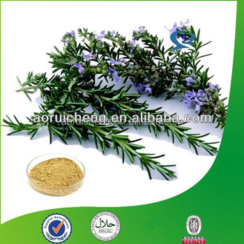 High Quality Rosemary Oleoresin Extract