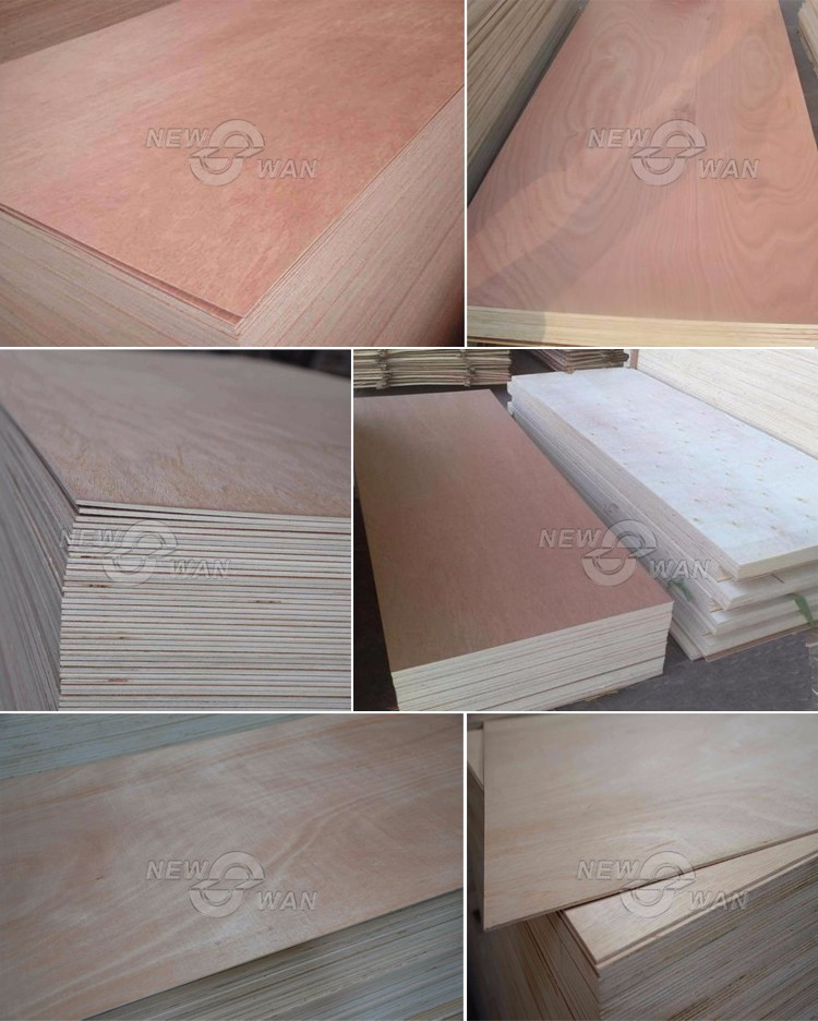 Door Skin Plywood / Door Size Plywood / Plywood Doors Design