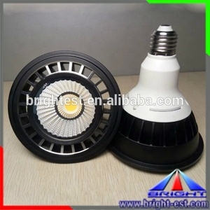 New Epistar LED PAR 30 Green SpotLight D95mm Directional Spot Light 100-240V AC 12W LED Par Light