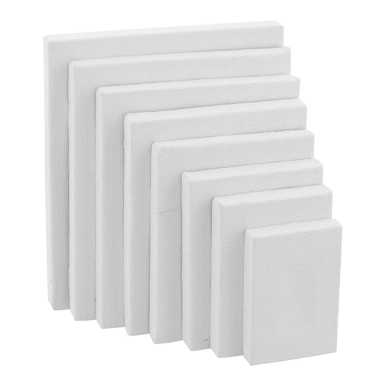 "US Art Supply Mini Stretched Canvas 10-ounce Primed Variety Rectangular Assortment (8-MINI Canvases -1""x2-3/8, 2x2-3/4, 2-3/8x3-1/8, 2-7/8x3-5/8, 3-1/4x4, 3-5/8x4-3/8, 4x4-3/4, 4-3/8x5-1/8"