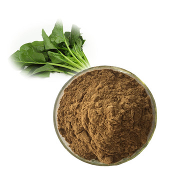 Natural spinach powder extract with factory price