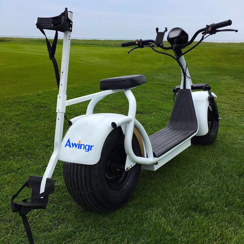 2018 Fashion Design Electric Golf Scooter Citycoco 1000w
