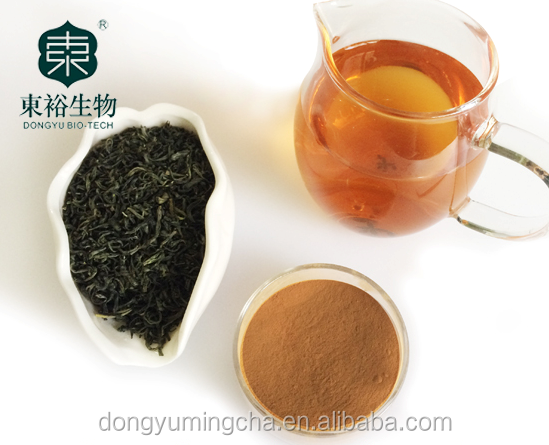 Green Tea Extract different ratio of polyphonel 20% 50% 80% 90% with best quality and low price