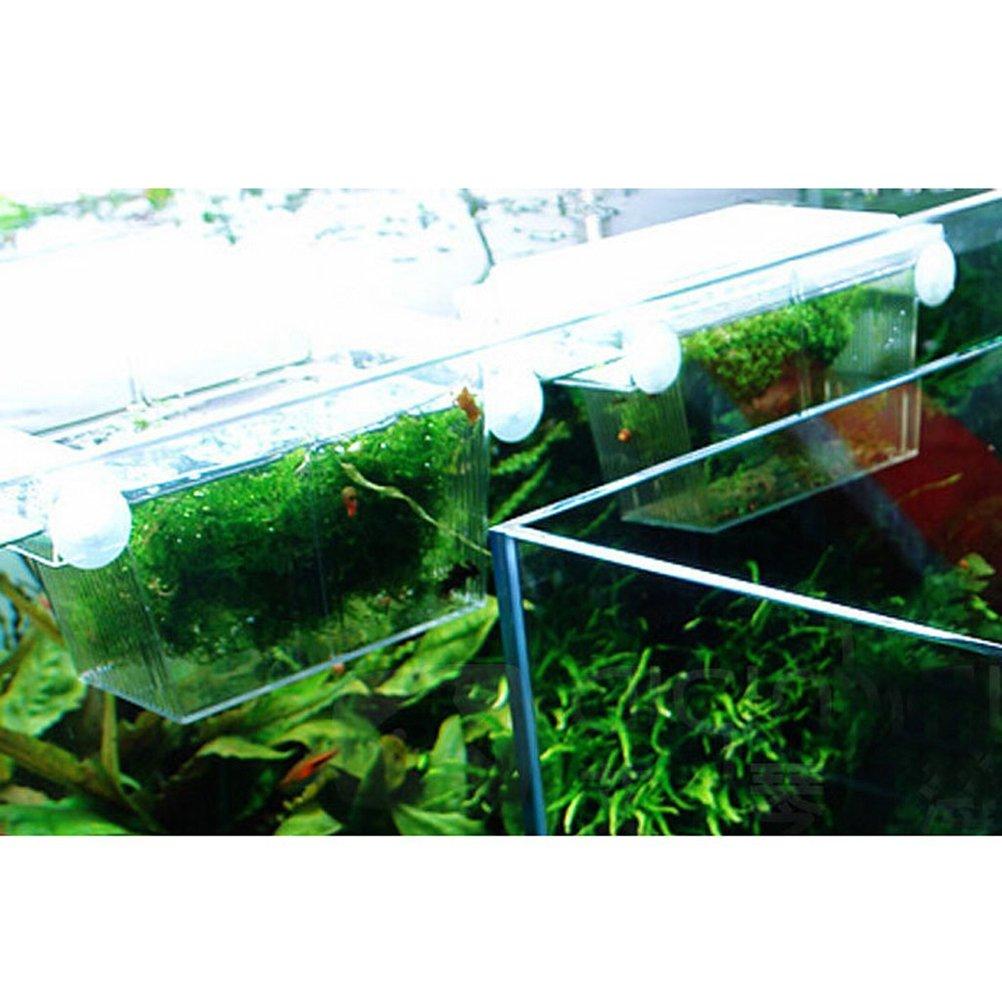 YML Fish Hatchery Tank 9 by 4 by 4-1//2-Inch