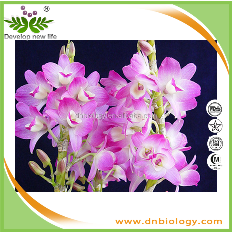 Best selling natural Dendrobium Orchid Extract Powder