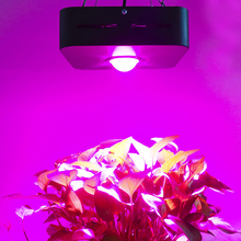 China Lieferant <span class=keywords><strong>Aquarium</strong></span> 50 W LED Wachsen Pflanzen Led-beleuchtung Anlage